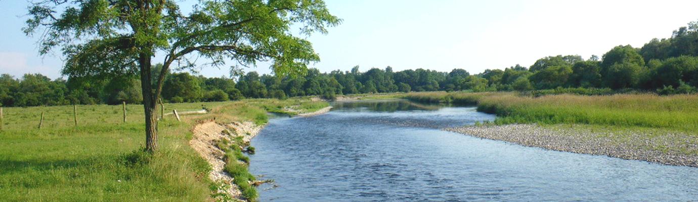 carte de peche moselle Cartes de pêche   Fédération de pêche de Meurthe et Moselle